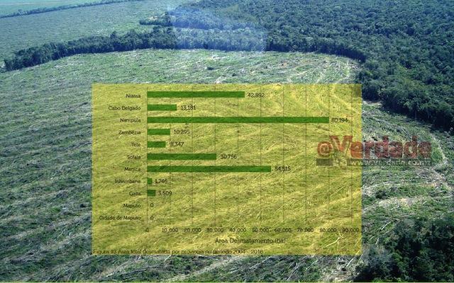 Análise do Desmatamento em Moçambique 2003 -2016 - MITADER