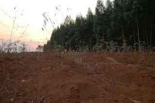 Foto da Justiça Ambiental